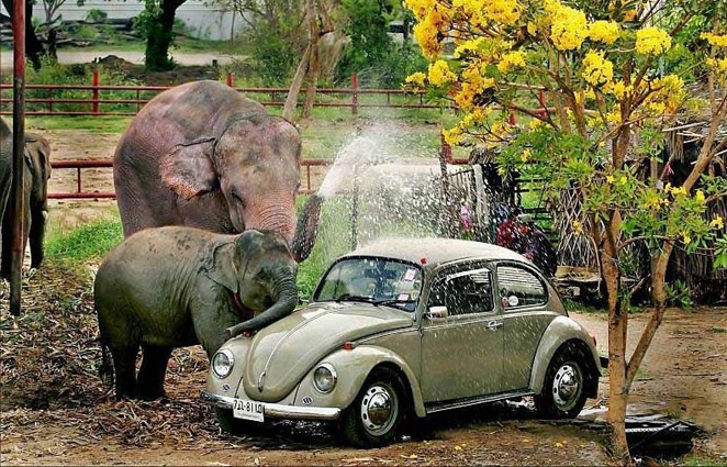 De auto laten wassen in de wasstraat