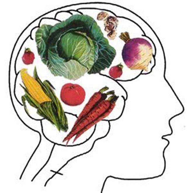vegetarisch door het leven gaan