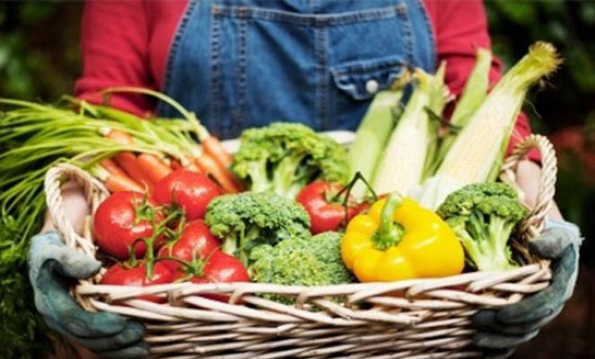 de boerenmarkt
